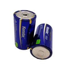 2pcs Alkaline dry cell D size battery 15000mAH cell Flasher Batteries