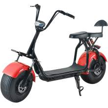 2000W Fat Tire Electric Scooter With Two Wheels Two Seat 60V20Ah