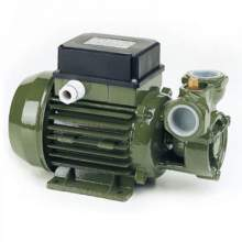 0.5Hp Electric Peripheral Impeller Pump KF 1 Max Flow 1110GPH