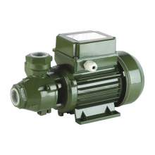 0.5Hp Electric Peripheral Impeller Pump KF 0 Max Flow 792 GPH