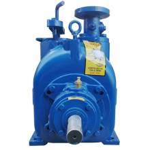 2'' x 2'' P Series Self Priming Sewage Pump