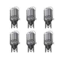 6-PCS Tanks 7BBL Pro Conical Fermenter 304 Stainless Steel