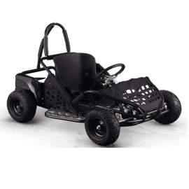 Go Kart Racing Sport Kart for Kid Ride Off Road Baja