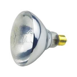 250Watt ETL Coated Infrared Heat Lamp Bulb Shatter Resistant