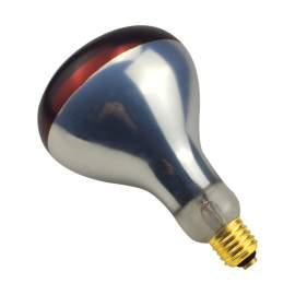 250Watt ETL Infrared Heat Lamp Bulb Coated Shatter Resistant